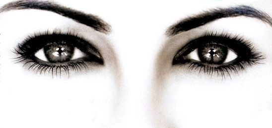 WOW! Lash & Brow *Special Offer*